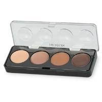Revlon Illuminance Creme Shadow Quad - Not Just Nudes