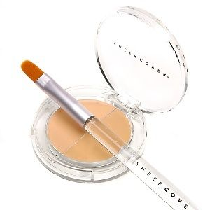 Sheer Cover Studio Concealer Brush