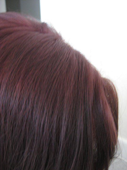 Feria Crushed Garnet Hair Color