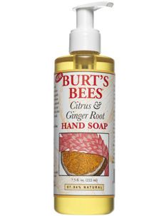 Burt's Bees Citrus & Ginger Hand Wash [DISCONTINUED]