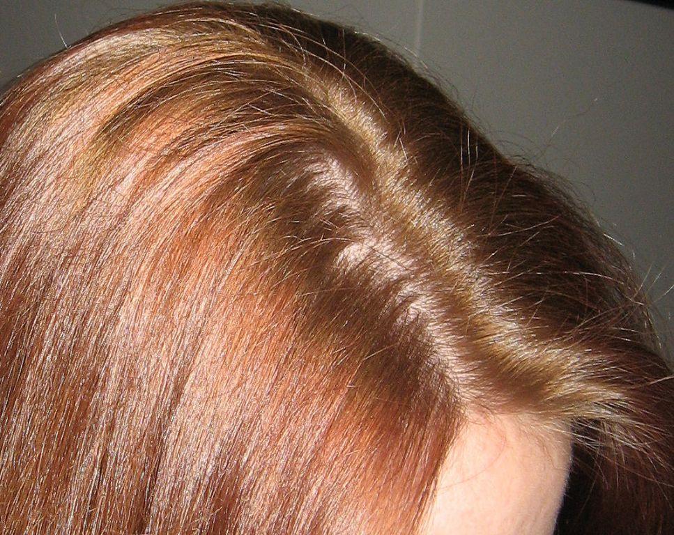 Hair - L'Oreal - Feria Haircolor Hi-Lift Browns