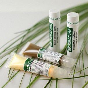 Skin Acitves-Lip Trio Kit