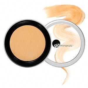 GloMinerals Camouflage Oil-free concealer