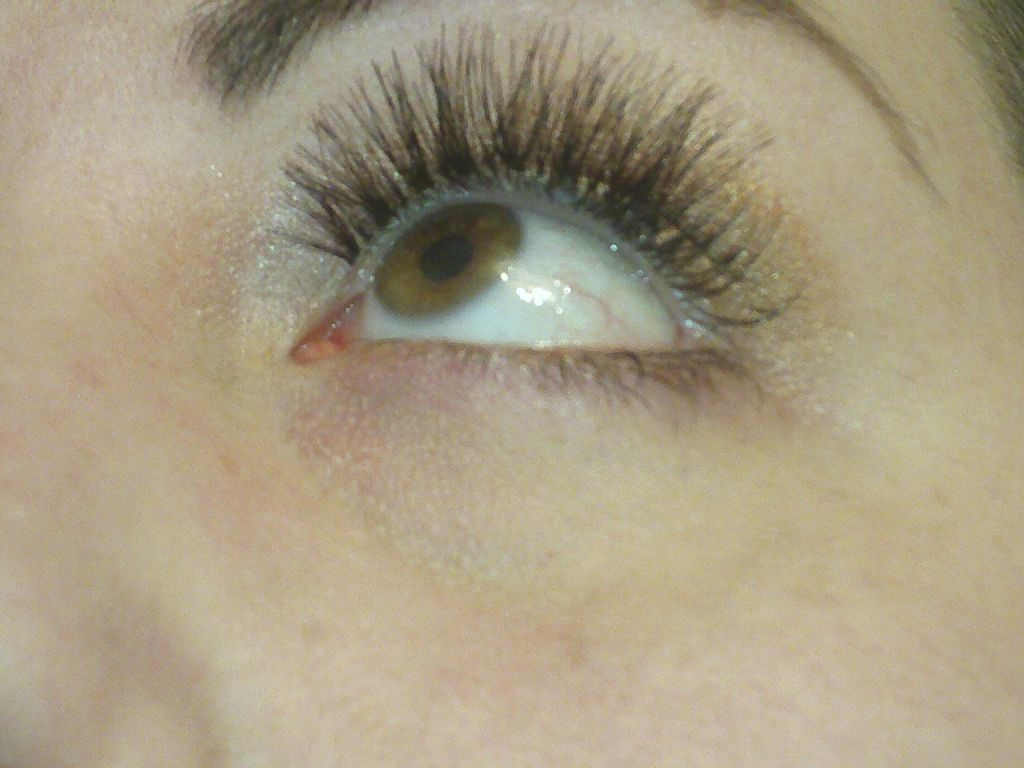 (Looking Up) Ardell 120 Demi Black lashes (Uploaded by Amadahy)
