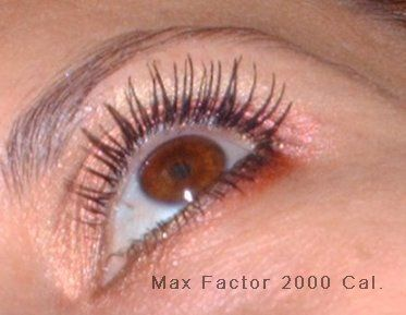 a9ed72774ac Max Factor 2000 Calorie Mascara reviews, photos, ingredients Sorted ...