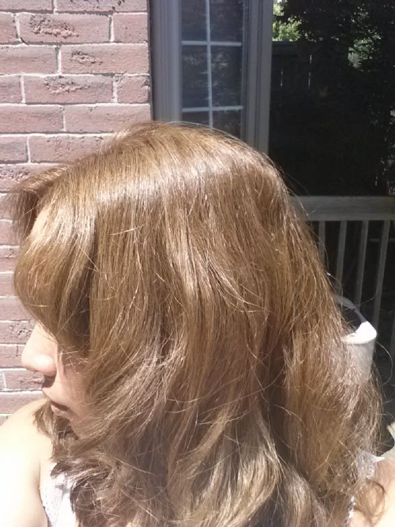 L Oreal Superior Preference Extra Light Ash Brown Ul61