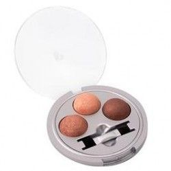 Physicians Formula Baked Collection - Baked Spices