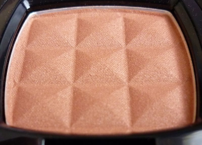 Nyx Professional Makeup Powder Blush Terra Cotta Reviews