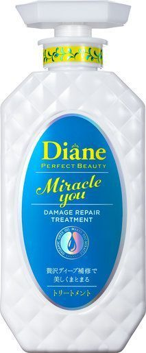 Miracle You Damage Repair Treatment