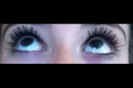 Mega Plush Lashes